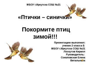 «Птички – синички» Покормите птиц зимой!!! МБОУ г.Иркутска СОШ №21 Презентаци