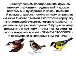 С наступлением холодов нашим друзьям птичкам становится труднее найти корм и
