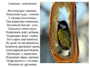 Синички – невелички! Желтогрудые синички, Невелички чудо – птички У окошка п