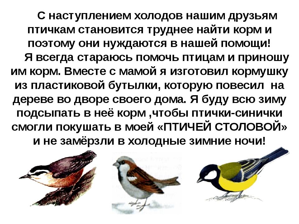 С наступлением холодов нашим друзьям птичкам становится труднее найти корм и...