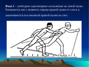Фаза 1 – свободное одноопорное скольжение на левой лыже. Начинается оно с мом