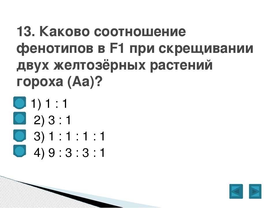 1) 1 : 1  2) 3 : 1  3) 1 : 1 : 1 : 1  4) 9 : 3 : 3 : 1 13. Каково соотн...
