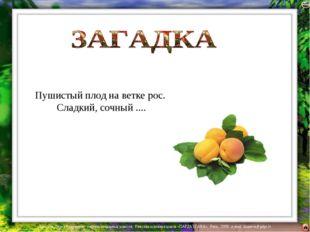 Пушистый плод на ветке рос. Сладкий, сочный .... Лазарева Лидия Андреевна, уч