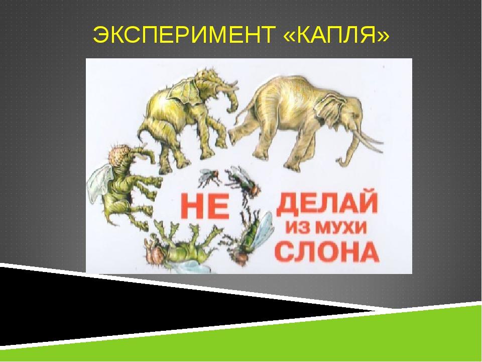ЭКСПЕРИМЕНТ «КАПЛЯ»