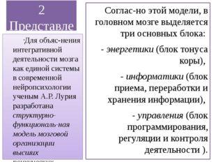 2 Представление о мозговой локализации высших психических функций Согласно э