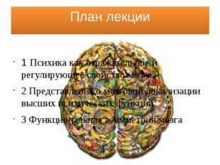 План лекции 1 Психика как отражательное и регулирующее свойство мозга. 2 Пред