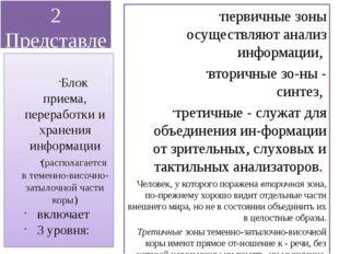 2 Представление о мозговой локализации высших психических функций первичные з