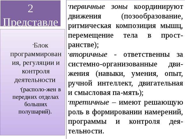 2 Представление о мозговой локализации высших психических функций первичные з...