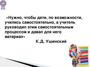 . «Нужно, чтобы дети, по возможности, учились самостоятельно, а учитель руков