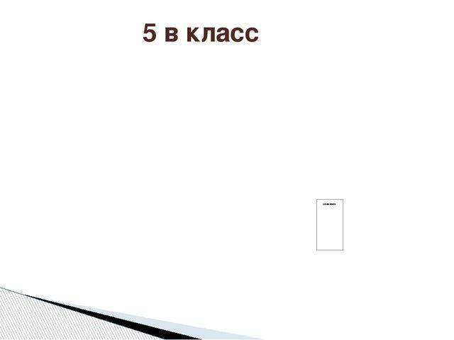5 в класс