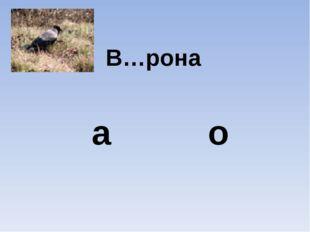 В…рона а о