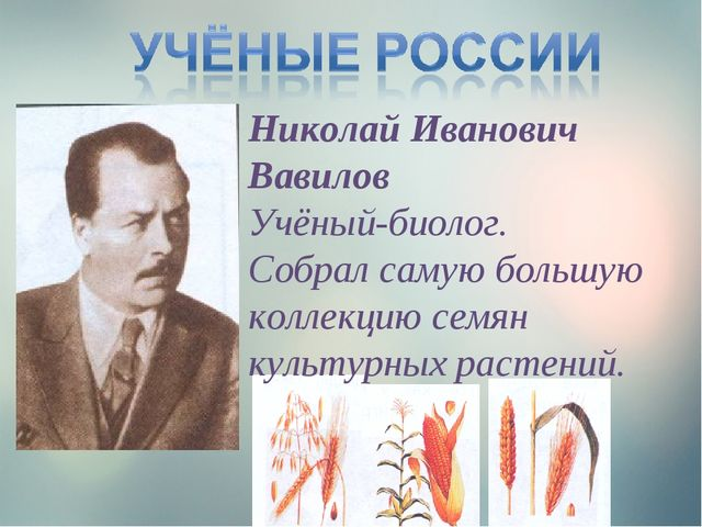Николай Иванович Вавилов Учёный-биолог. Собрал самую большую коллекцию семян...