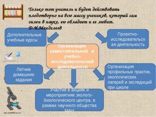 Организация профильных практик, экологических лагерей и экспедиций при школе