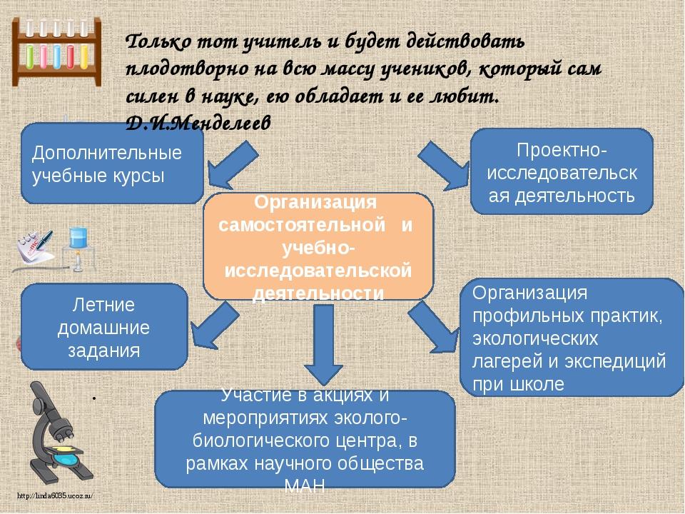 Организация профильных практик, экологических лагерей и экспедиций при школе...