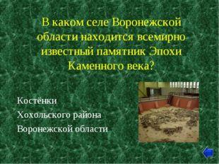 В каком селе Воронежской области находится всемирно известный памятник Эпохи
