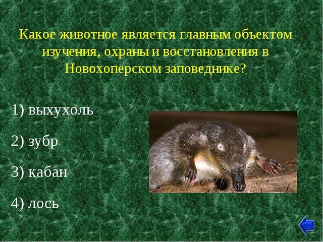 Какое животное является главным объектом изучения, охраны и восстановления в...