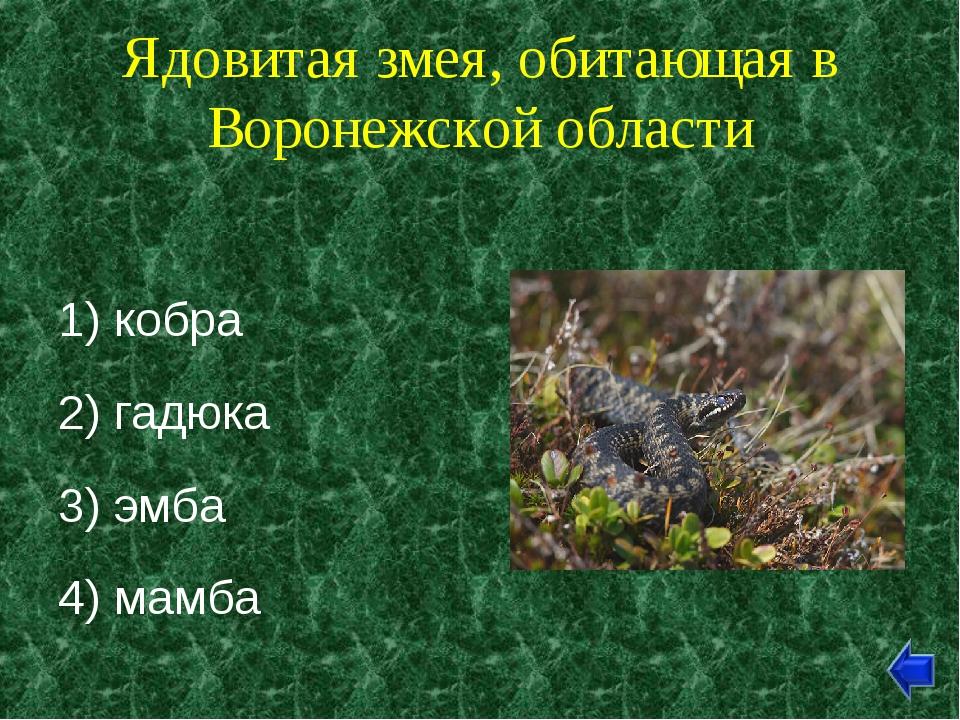 Ядовитая змея, обитающая в Воронежской области 1) кобра 2) гадюка 3) эмба 4)...