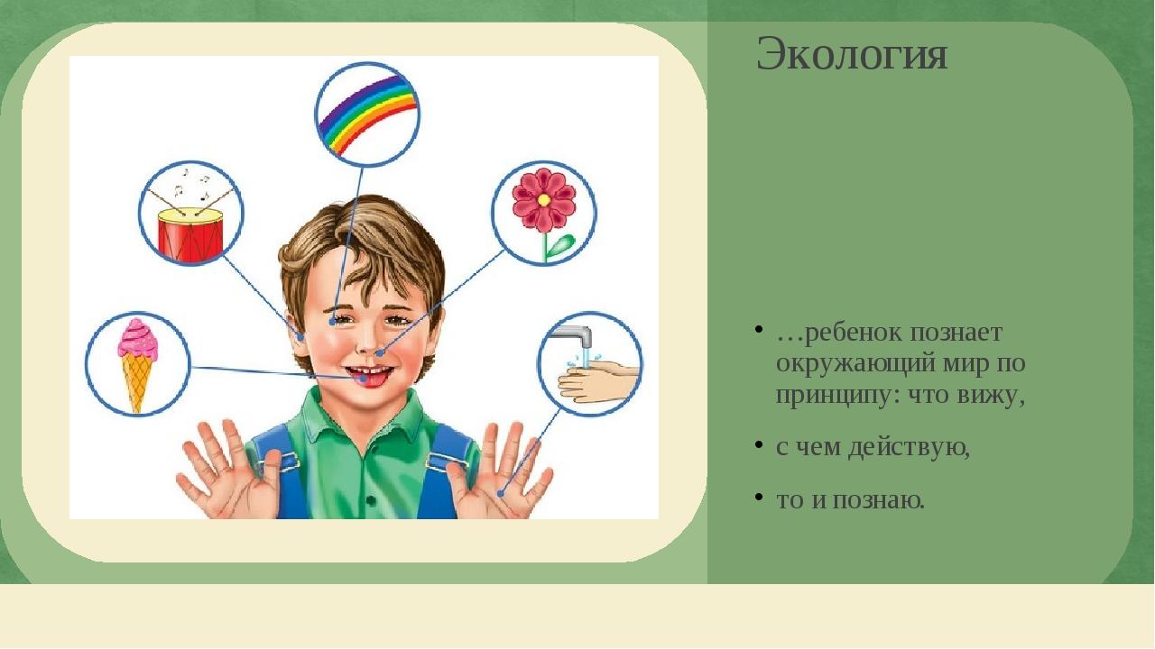 Экология …ребенок познает окружающий мир по принципу: что вижу, с чем действу...