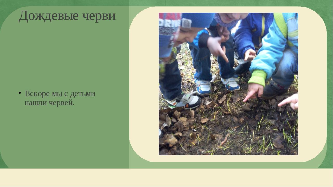 Вскоре мы с детьми нашли червей. Дождевые черви