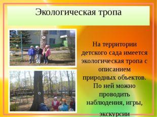 Экологическая тропа На территории детского сада имеется экологическая тропа с