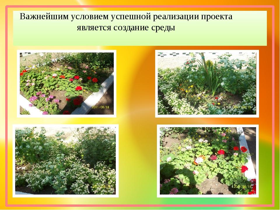Важнейшим условием успешной реализации проекта является создание среды