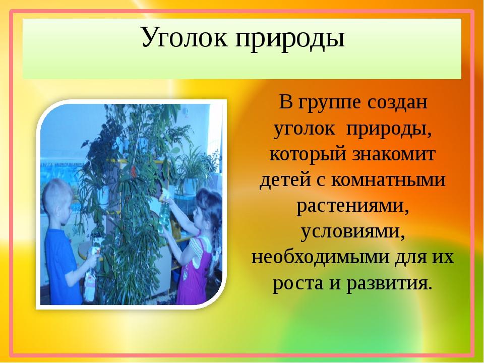 Уголок природы В группе создан уголок природы, который знакомит детей с комна...