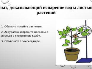 Опыт, доказывающий испарение воды листьями растений 1. Обильно полейте растен