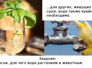 …для других, живущих на суше, вода также крайне необходима. Задание: Объясни