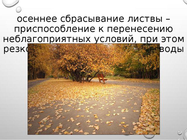 осеннее сбрасывание листвы – приспособление к перенесению неблагоприятных усл...