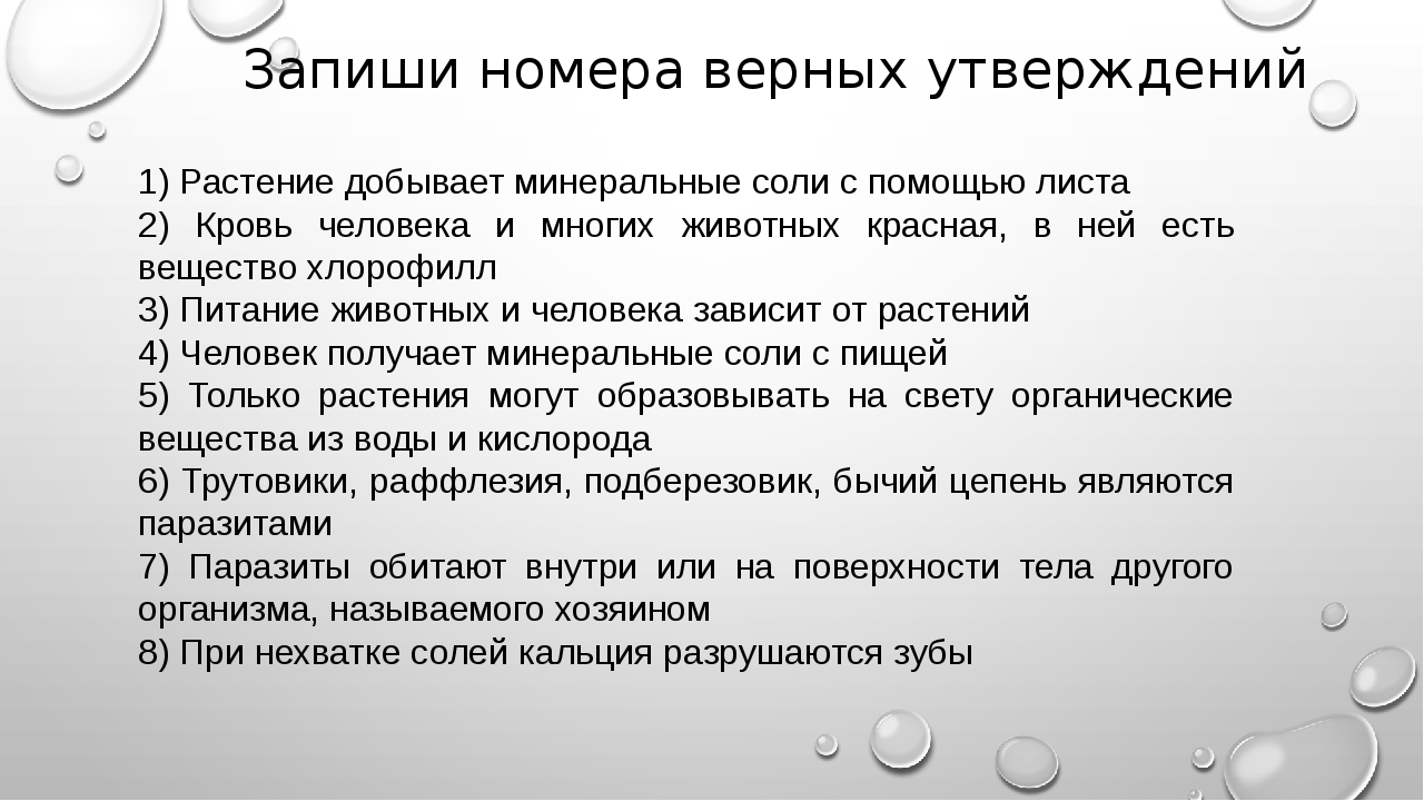 Запиши номера верных утверждений 1) Растение добывает минеральные соли с помо...