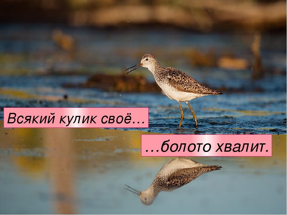Всякий кулик своё… …болото хвалит.