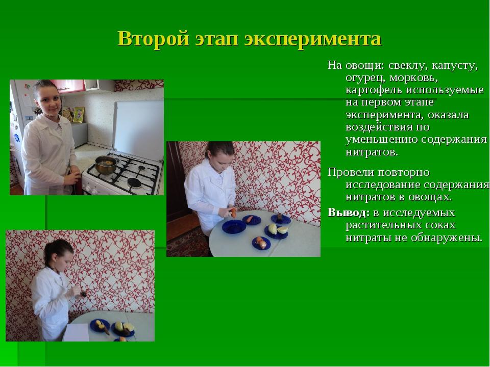 Второй этап эксперимента На овощи: свеклу, капусту, огурец, морковь, картофел...