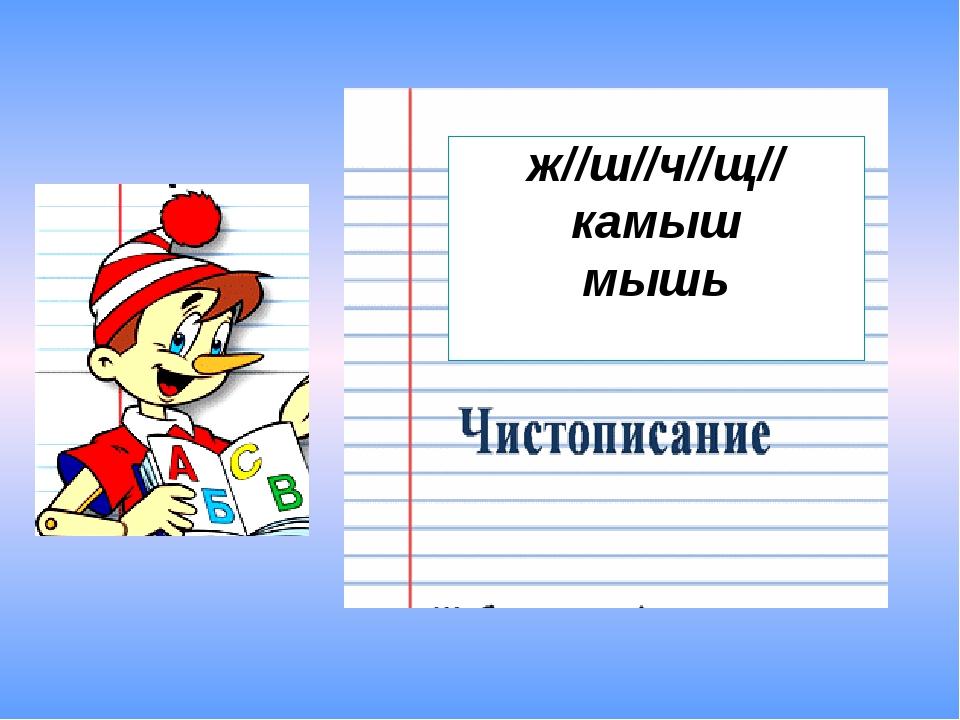 ж//ш//ч//щ// камыш мышь