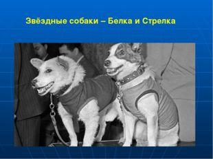 Звёздные собаки – Белка и Стрелка