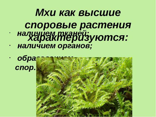 Мхи как высшие споровые растения характеризуются: наличием тканей; наличием о...