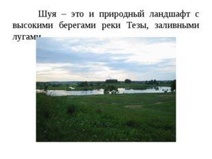 Шуя – это и природный ландшафт с высокими берегами реки Тезы, заливными луга