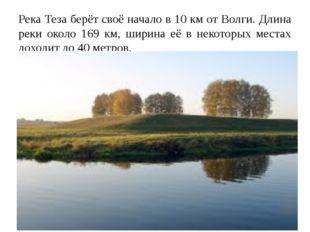 Река Теза берёт своё начало в 10 км от Волги. Длина реки около 169 км, ширина
