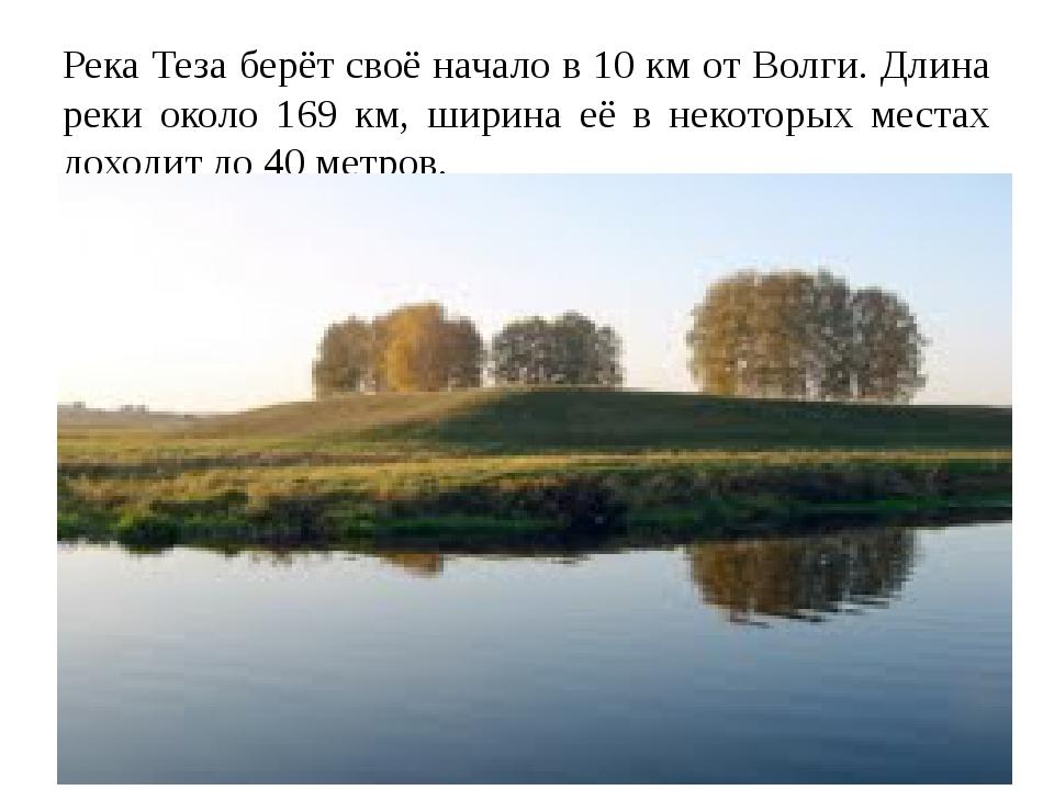 Река Теза берёт своё начало в 10 км от Волги. Длина реки около 169 км, ширина...