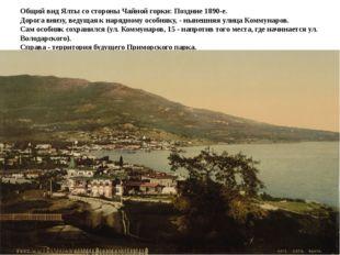 Общий вид Ялты со стороны Чайной горки: Поздние 1890-е. Дорога внизу, ведущая