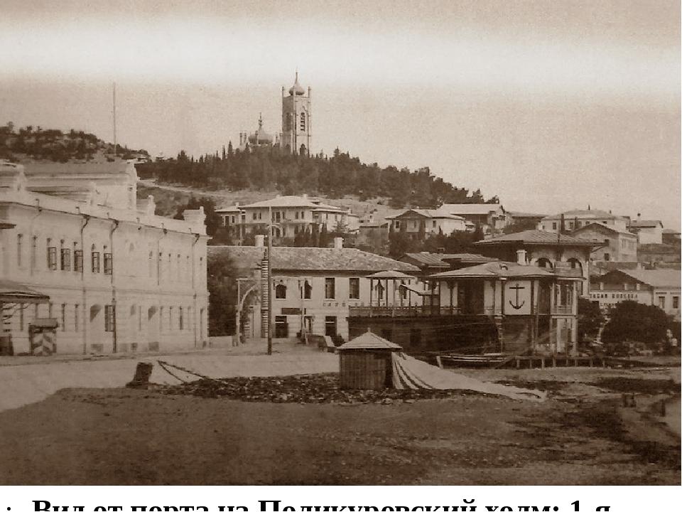 Вид от порта на Поликуровский холм: 1-я половина 1880-х.