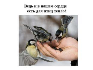 Ведь и в нашем сердце есть для птиц тепло!