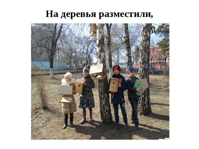 На деревья разместили,