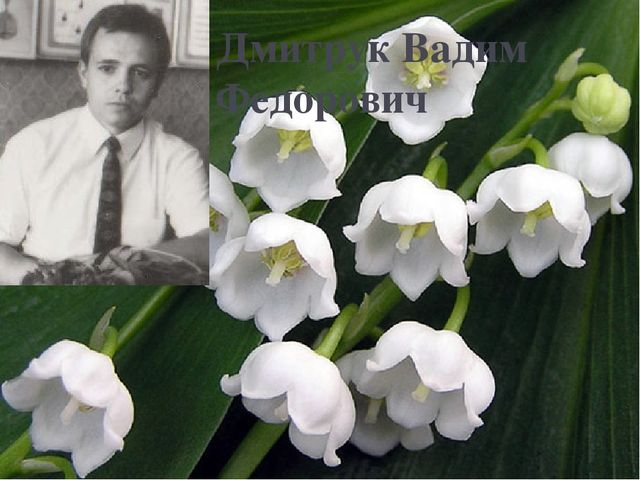 Дмитрук Вадим Федорович