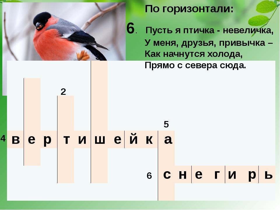 1 2 3 5 4 6 По горизонтали: в е р т и ш е й к а 6. Пусть я птичка - невеличка...