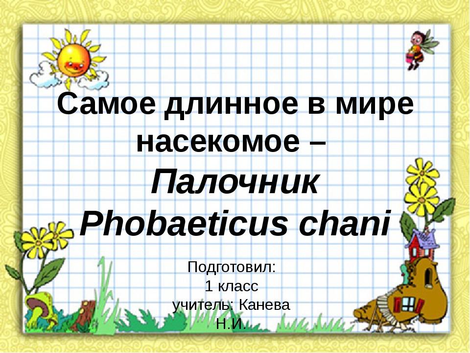 Самое длинное в мире насекомое – Палочник Phobaeticus chani Подготовил: 1 кла...