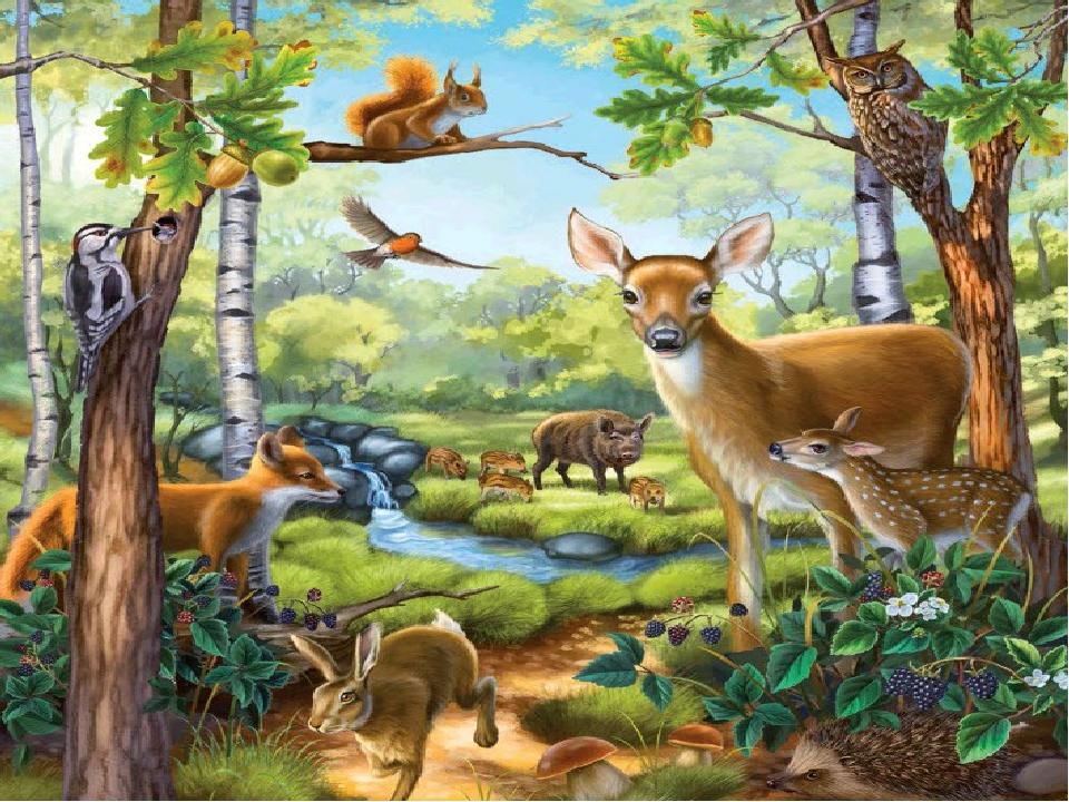 Дерево, трава и птица Не всегда умеют защититься. Если будут уничтожены они...