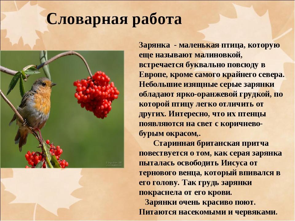 Словарная работа Зарянка - маленькая птица, которую еще называют малиновкой,...