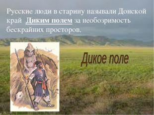 Русские люди в старину называли Донской край Диким полем за необозримость бес