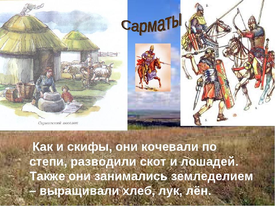 Как и скифы, они кочевали по степи, разводили скот и лошадей. Также они зани...