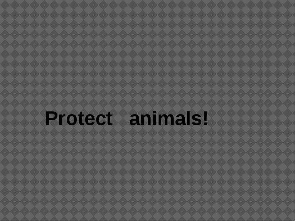 Рrotect animals!